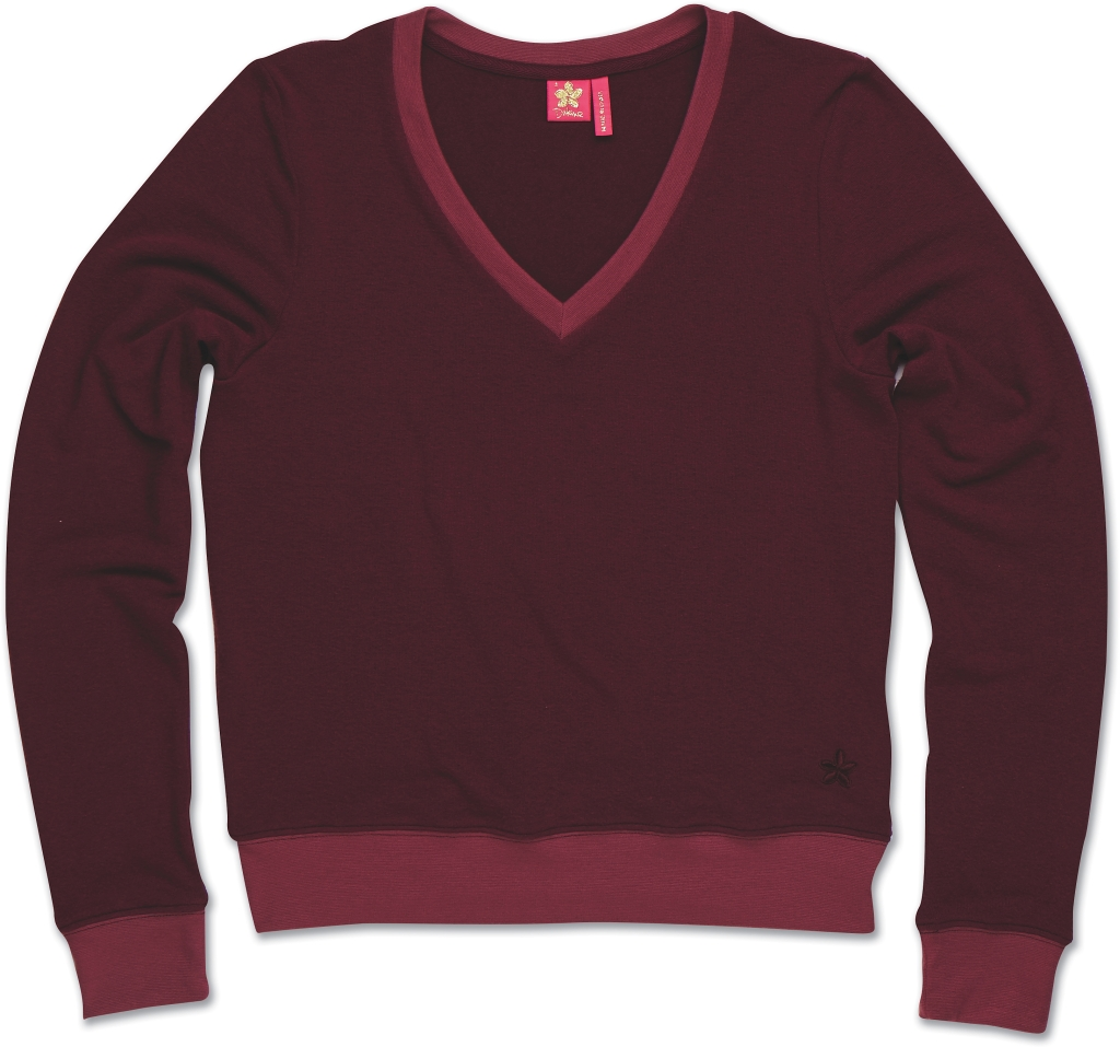 Dakine Boyfriend V-Neck Dark Cherry-30