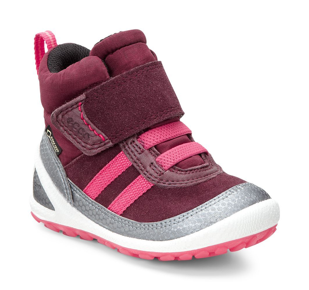 Kid´s Biom Lite Infants Boot Buffed Silver/Bordeaux/Port-30