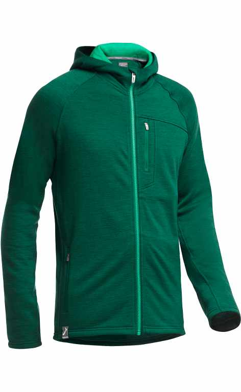 Icebreaker Sierra LS Zip Hood Stripe Bottle/Lucky-30